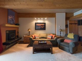 218 Storm Meadows Club B - Steamboat Springs vacation rentals