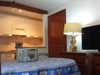 Maison di Luisa  Courmayeur apartment Genzianella - Courmayeur vacation rentals