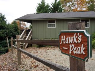 Hawk's Peak at Paradise Hills Winery Resort - Blairsville vacation rentals