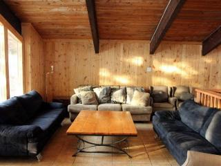 Nice Chalet with Internet Access and A/C - Blue Mountains vacation rentals