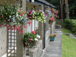 Aber Cottage, Plas Heulog, Llanfairfechan - Llanfairfechan vacation rentals