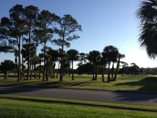 "Overlooking Golf Course at ""Florida's Best Beach"" - New Smyrna Beach vacation rentals"