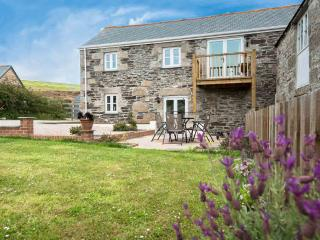 Shirehorse Barn - Helston vacation rentals