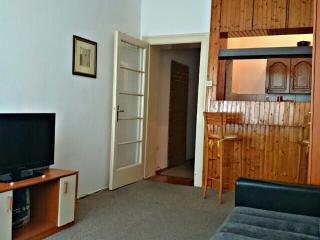Apartment in the heart of Belgrade - Belgrade vacation rentals