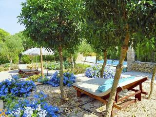 Casa Higo Chumbo - Poolfinca, herrlicher Weitblick - Porreres vacation rentals