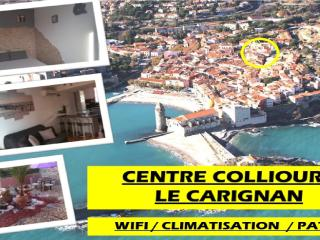 Nice Condo with Dishwasher and Long Term Rentals Allowed (over 1 Month) - Collioure vacation rentals