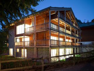 Chalet Amber - 3 Bedroom Duplex Apartment, Sleeps 6 - Zermatt vacation rentals