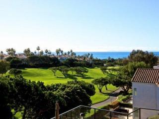 Monarch Beach Ocean View Home - Dana Point vacation rentals