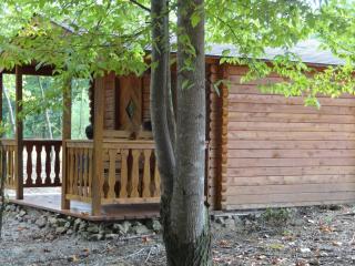 Broken Eagle Recreation Campground and Resort #4 - Vandiver vacation rentals