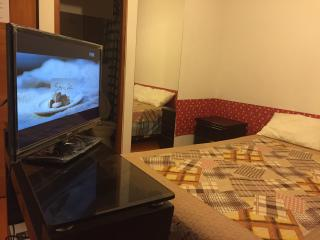5 bedroom Apartment with Internet Access in Lima - Lima vacation rentals