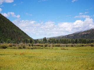 Sundance 201 - Conveniently located 2 bedroom Telluride condo - Telluride vacation rentals