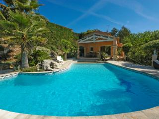 Lovely House with DVD Player and Private Outdoor Pool - Biot vacation rentals