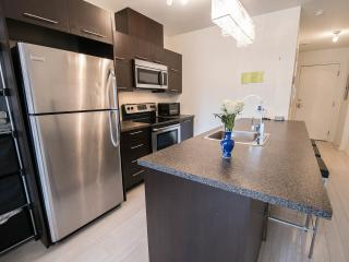 Studio near Concordia University's Loyola campus - Montreal vacation rentals