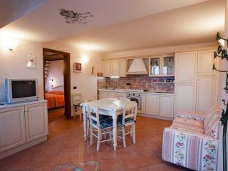 Cozy 2 bedroom Condo in Pontone with Internet Access - Pontone vacation rentals