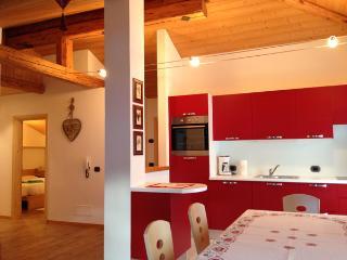 Mansarda di 70 mq. in VAL DI FIEMME - Tesero vacation rentals