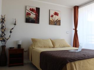 Apartments Latitud Sur - Santiago vacation rentals