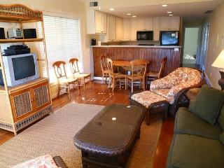 "126 Jungle Rd - ""The Retreat Villa #6B"" - Edisto Beach vacation rentals"