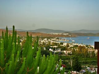 Orakent Villa Dalyan - Ortakent vacation rentals