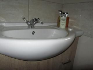Vine Cottage 2 bedrooms with hot tub - Bideford vacation rentals