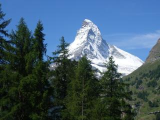 Studio Collinetta - Zermatt vacation rentals