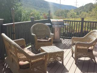 Cozy Cabin with Deck and Television - Fleischmanns vacation rentals
