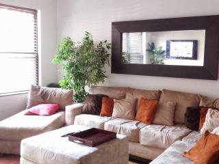 A Modern Duplex in a Hot Location - Brooklyn vacation rentals