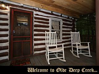 Olde Deep Creek - 3rd Night Free! - Oakland vacation rentals