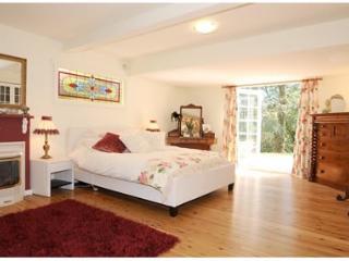 Spacious & beautiful Spa Suite - Sassafras vacation rentals