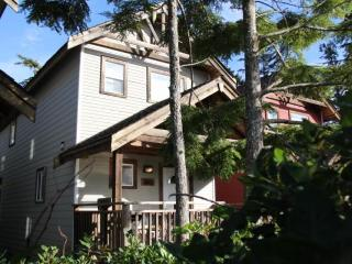 Beautiful House with Deck and Dishwasher - Ucluelet vacation rentals
