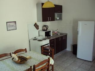 Gregovic M&M 1/6 Apartment - Petrovac vacation rentals