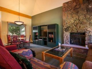 Eagle-Vail Duplex, Nordic Trails in Winter, Biking Trails in Summer, Convenient to Vail or BC! - Eagle-Vail vacation rentals