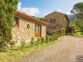 Tuscan Dream Il Gonfianuvole Antica Quercia Verde - Cortona vacation rentals