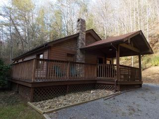 Perfect Cabin with Internet Access and Television - Tennessee vacation rentals