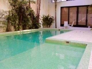 Cozy 2 bedrooms apartment in downtown - Playa del Carmen vacation rentals