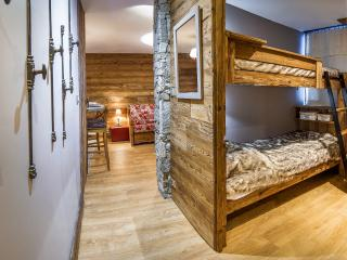 TIGNES 28m² wifi 4 sleeps skin in-out southface - Tignes vacation rentals