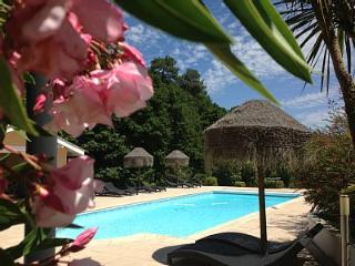 Biarritz luxe vacation rental A/C pool golf beach - Biarritz vacation rentals