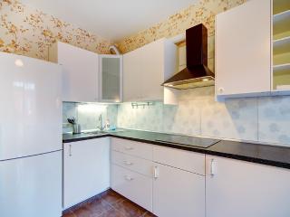Cozy 2 bedroom Apartment in Petrodvortsovy District - Petrodvortsovy District vacation rentals