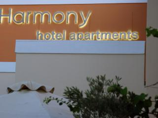 "Harmony Hotel Apartments ""IRIS"" for 2-3 Persons - Aiyion vacation rentals"
