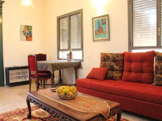 Villa Alma Superior - Yesod Hamaala vacation rentals