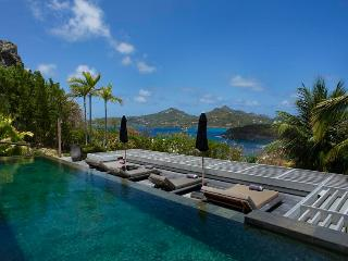 Short drive to Gustavia the Capital - Anse Des Cayes vacation rentals