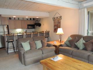 Lift One - 205 - 3B/3B - Aspen vacation rentals