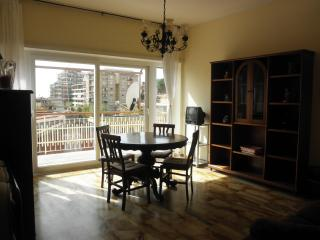 ATTICO CON TERRAZZO in centro, affitto turistico - Ladispoli vacation rentals