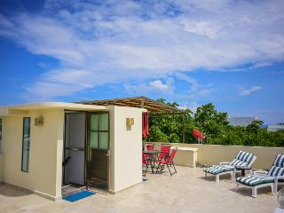 BIG GROUPS OF 11! PH with 3 bd and private terrace - Playa del Carmen vacation rentals