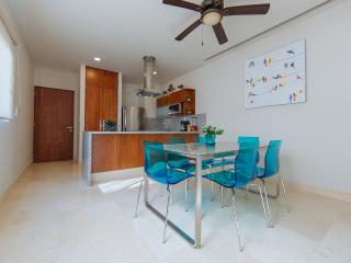 TERRAZAS 409/ 1BR. JACUZZI. ROOF TOP - Playa del Carmen vacation rentals