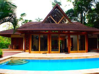 Deluxe 3 Bedroom - Pool - Beach - Jungle - Punta Uva vacation rentals