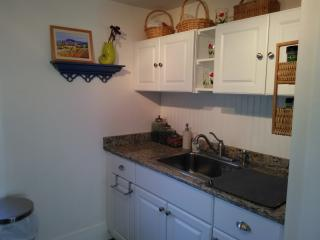 Beautiful Downtown Mystic 1 Bd Apartment! - Mystic vacation rentals
