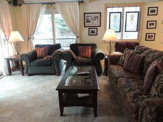 Gorgeous Condo in Aspen (Super Condo in Aspen (Lift One - 210 - 3B/3B)) - Aspen vacation rentals