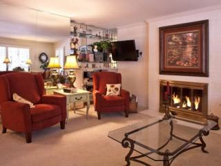 Walk to Lifts & Vail Village- On Gore Creek- Charming Convenience World Class FUN! - Vail vacation rentals