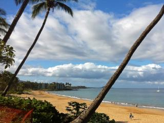 Special Price! Walk to beach Ocean View,Central AC - Kihei vacation rentals