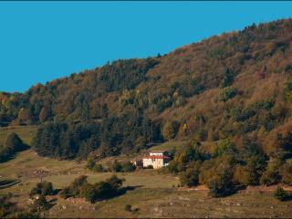 En pleine nature,un havre de paix et de serenite - Saint-Julien-Labrousse vacation rentals